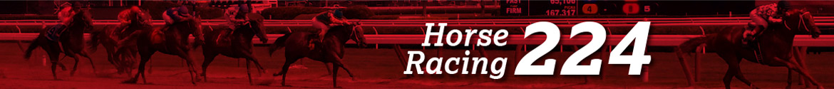 Horse Racing 224: Horse Tips & Stories By John Furgele