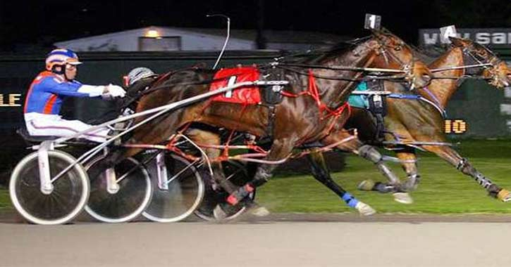 harness race action