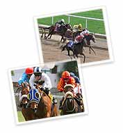 Saratoga Race Course, Saratoga Springs New York