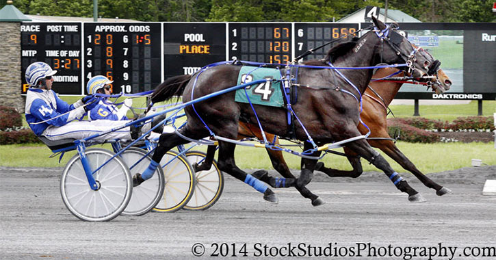 harness racing at saratoga casino hotel