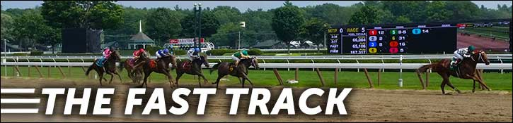 The Fast Track Banner