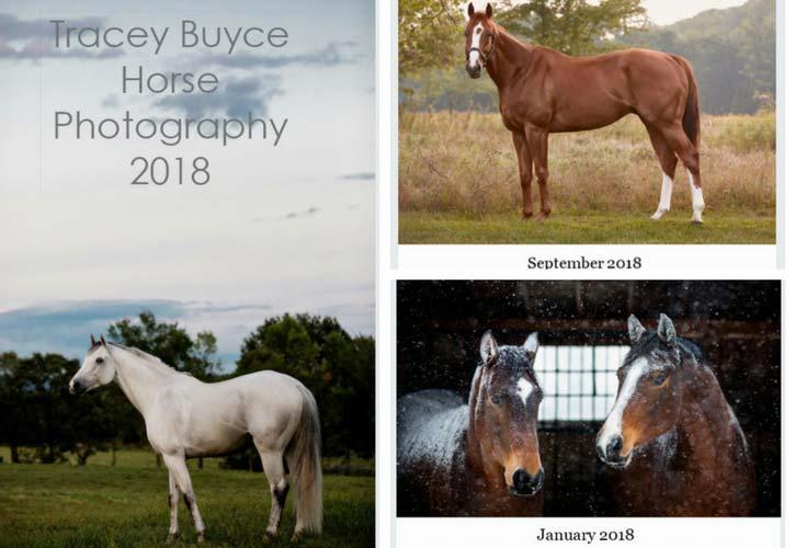 horse photography calendar