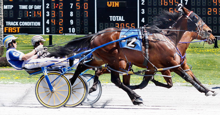 harness racing in action