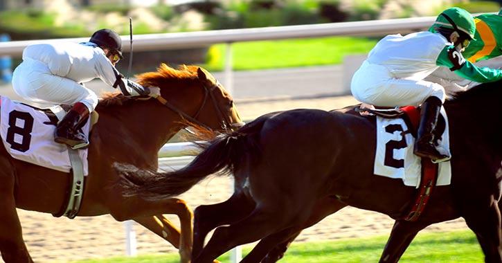 two jockeys race on two horses