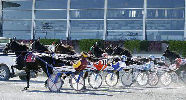 Saratoga harness racing