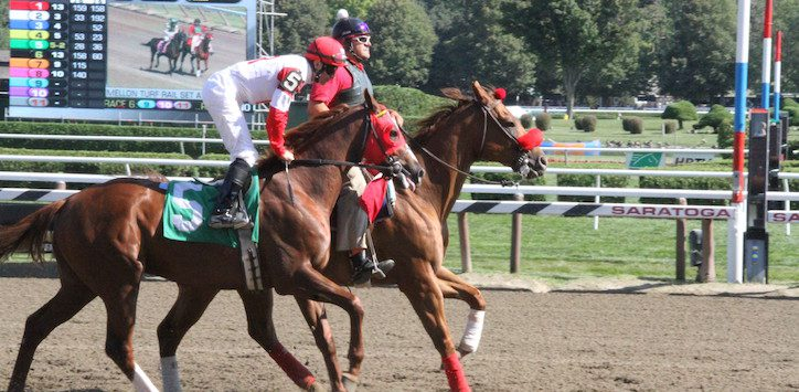 horses at Saratoga