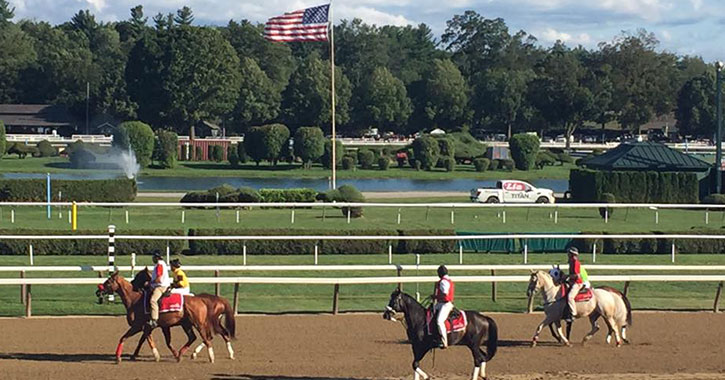 horses on a dirt track