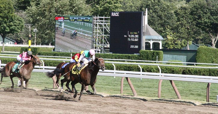Saratoga race track 2018 giveaways images