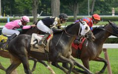 three thoroughbred horse racers