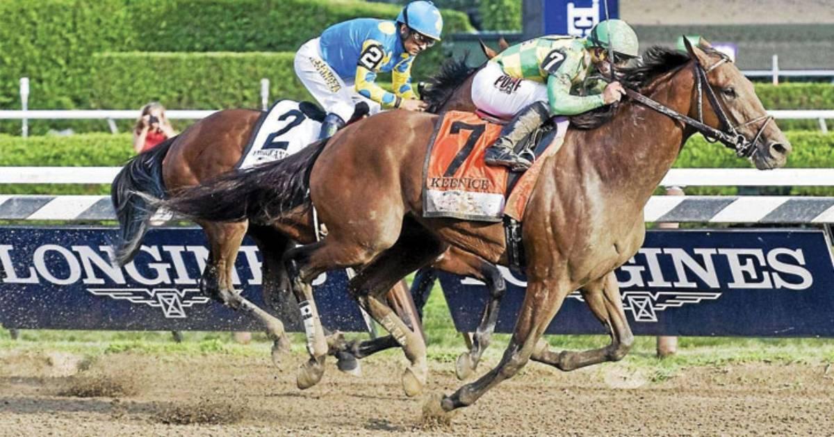 horses running a race