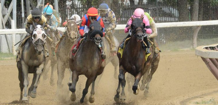 horse racing on a dirt track