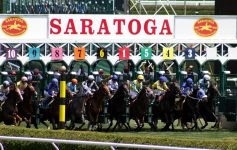 horses and riders at race starting gate