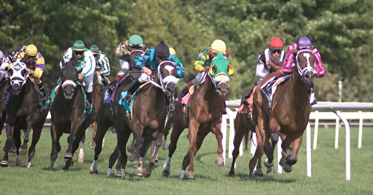 horses racing on turf